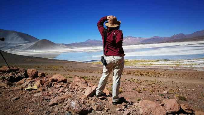 Salar Aguascalientes Atacama Chile